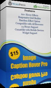 Image Caption Hover Pro WordPress Plugin
